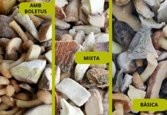 Spring promotion: Variety of mixed frozen mushrooms